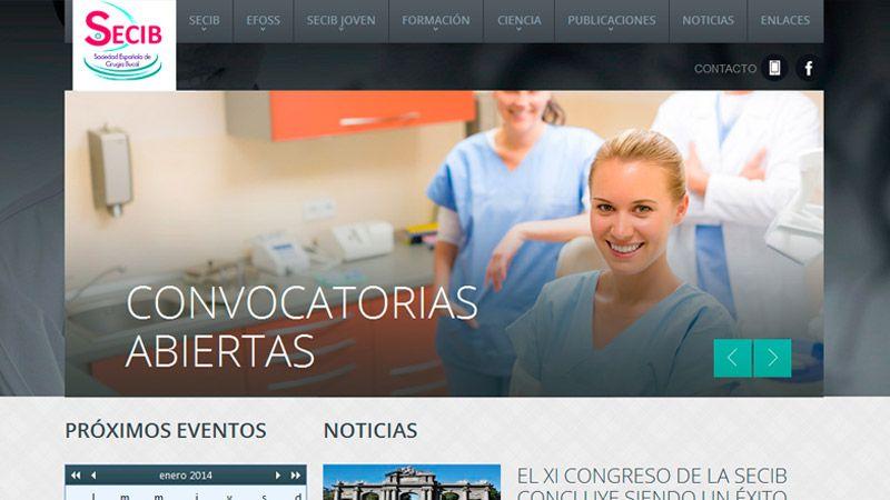 desarrollo de página web de SECIB